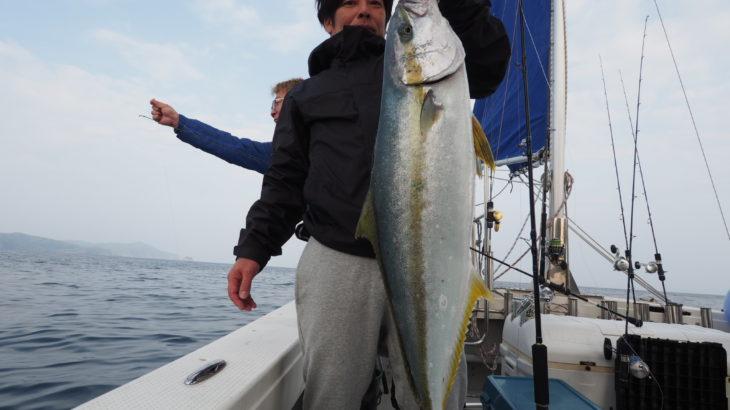 4月21日(日)隠岐の島 島後 スロージギング  ラインブレイク多発で惜しくも大型を逃しましたが、暇しなく遊べました!船首、船尾とも同じ釣果で一安心✨
