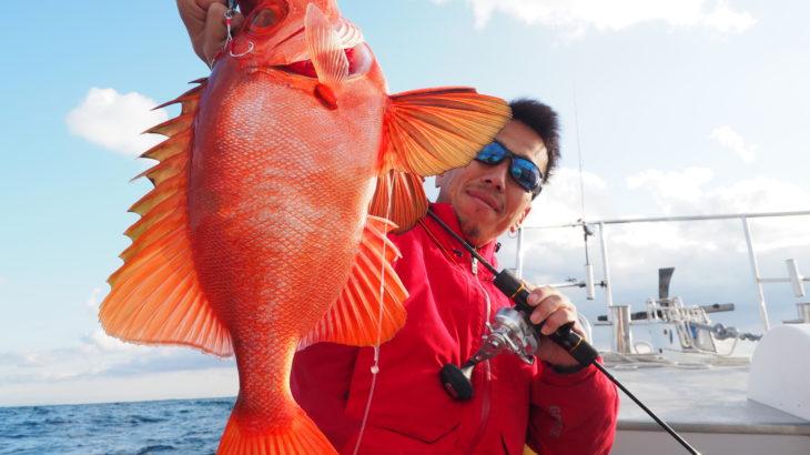 11月21日  近海ジギング!  とても良く釣れました✨