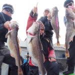 11月27日  隠岐の島タラジギング!今日は、潮も良く動いてくれたので良く釣れGTも出ました✨