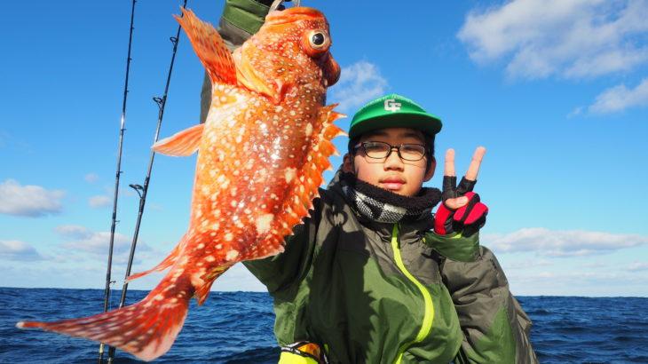 11月30日近海ジギング! 早朝は、とても大きなウネリでどうなる事かと思いましたが、しだいに風も弱まり目的のポイントに行くことができました!しかし根魚の活性が非常に悪くヒラマサを釣って遊ぶ結果となりました💦キハダ、ヒラメ、カサゴ、アコウ、ヒラマサ、ヤズでした😅