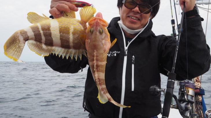 11月1月(日)  南西の強風予報でしたので、隠岐の島釣行を断念し近海ジギングに行って来ました!昨日より魚の活性はとても悪く苦戦しましたが、その状況化でもスピネギでは何とか釣れてました!