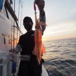 6月5日(土) 白イカ釣り! 明るいうちは大きな群れを探し何回も試し釣りしましたが何処もさっぱり(汗)日没寸前で何とかマシな場所を見つけましたが終日これと言ったドラマなく終了しました。 白イカ船中149杯 スルメ少し 8〜21 杯